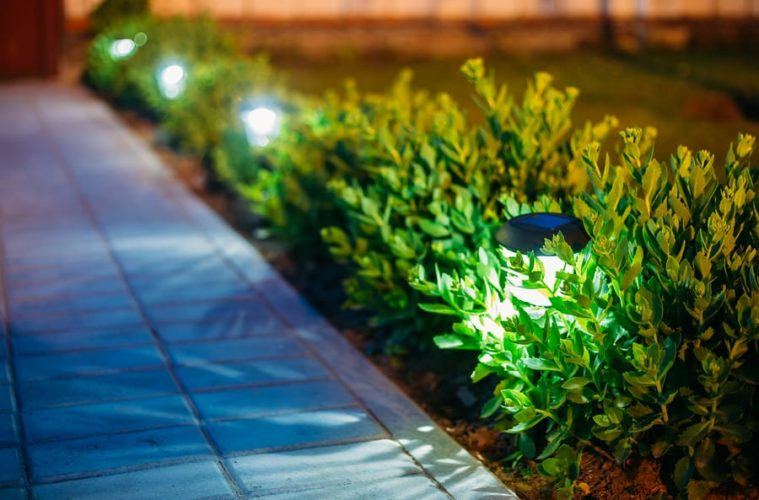 small solar garden lights