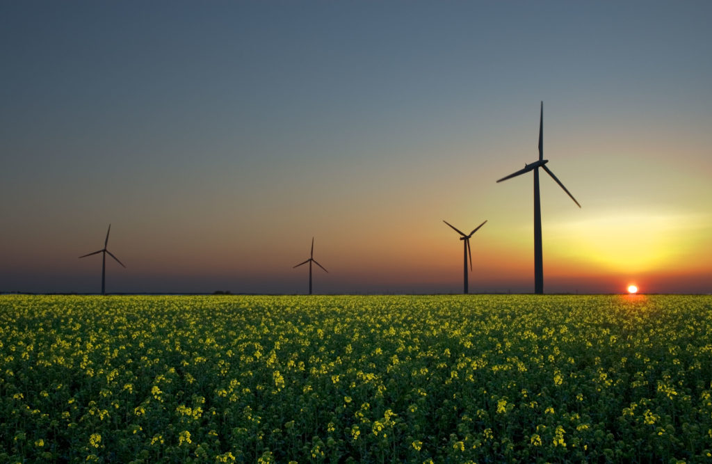 Wind Turbines Impact the Beauty of Nature